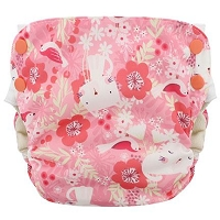 Blueberry Simplex 2.0 Sized All in One Diaper