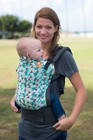Tula Ergonomic Baby Carrier - Toddler Size